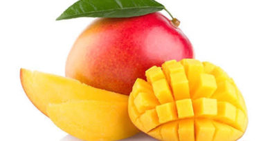 MANGO: The King of Fruit Kingdom